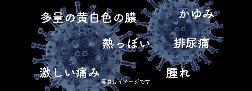 淋菌感染症メイン画像